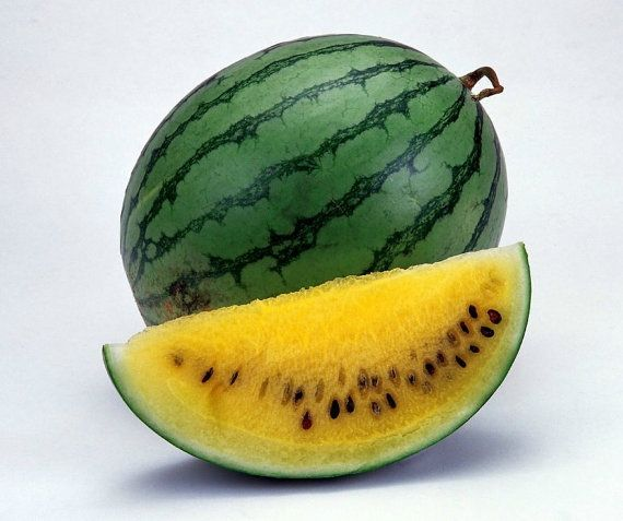 Organic 15 Seeds Heirloom Watermelon Yellow Fruit Seeds Super Sweet Large Edible Fruit F83