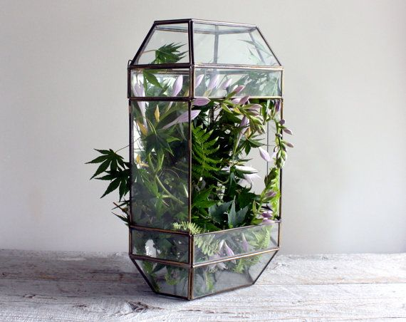 Large Vintage Glass and Mirror Terrarium by shavingkitsuppplies, $40.00
