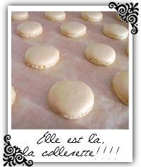 Conseils & Astuces pour... réussir vos Macarons