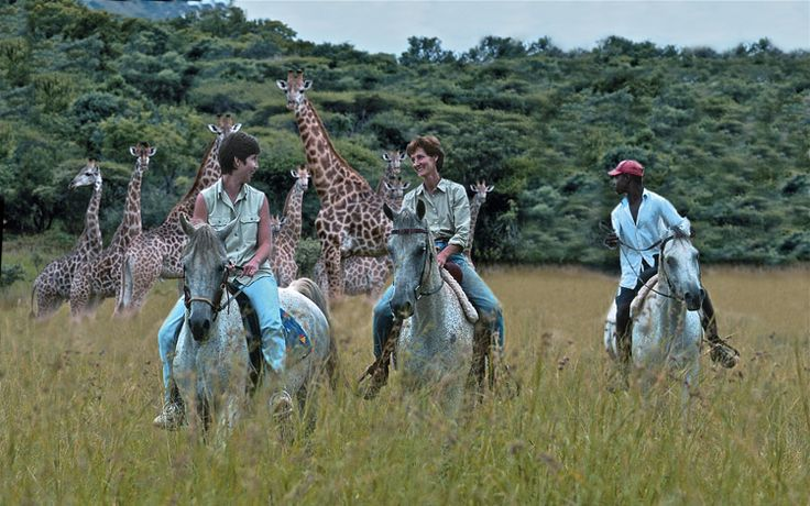 Pakamisa is predator & malaria free, creating a safe environment for a range of activities for adults and children not usually available in BIG 5 Reserves.