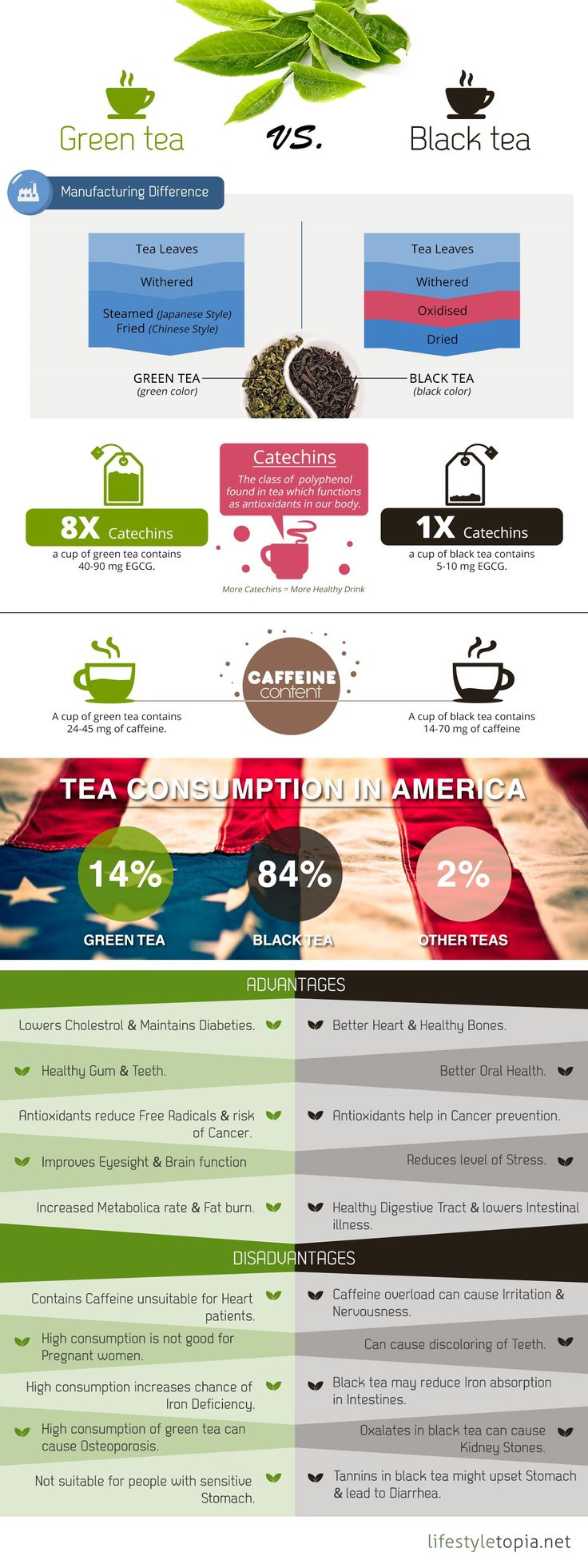 Infographic - Green Tea vs Black Tea.