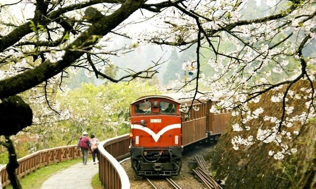 how to go to alishan from taipei
