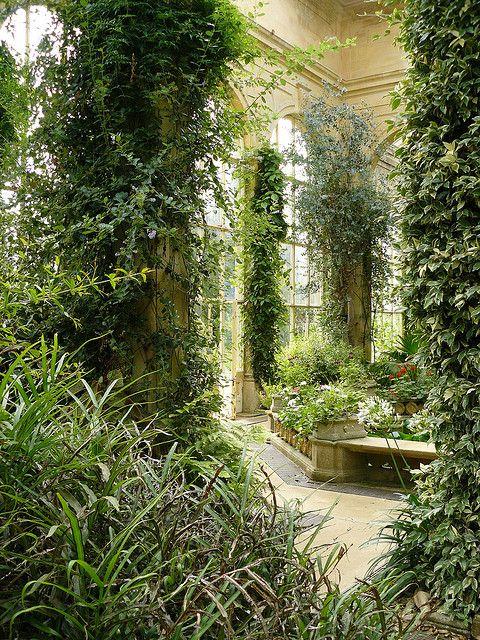 Castle Ashby - Orangery