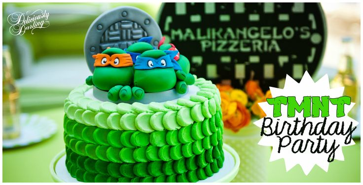 Teenage Mutant Ninja Turtle Inspired Birthday Party