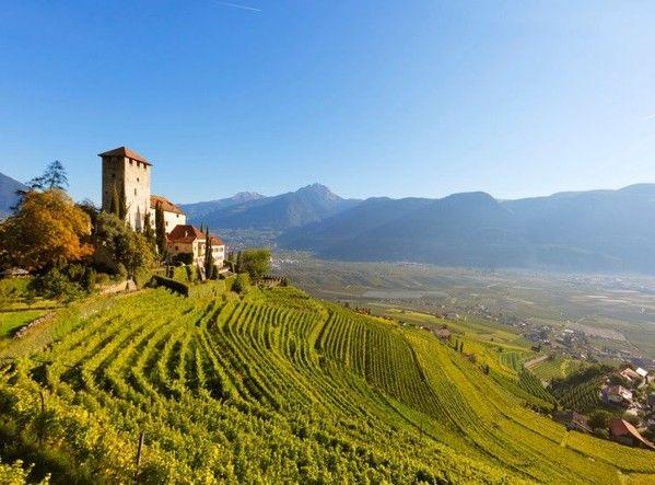 Альто Адидже, или Южный Тироль, - край экстремального виноделия в итальянских Альпах
