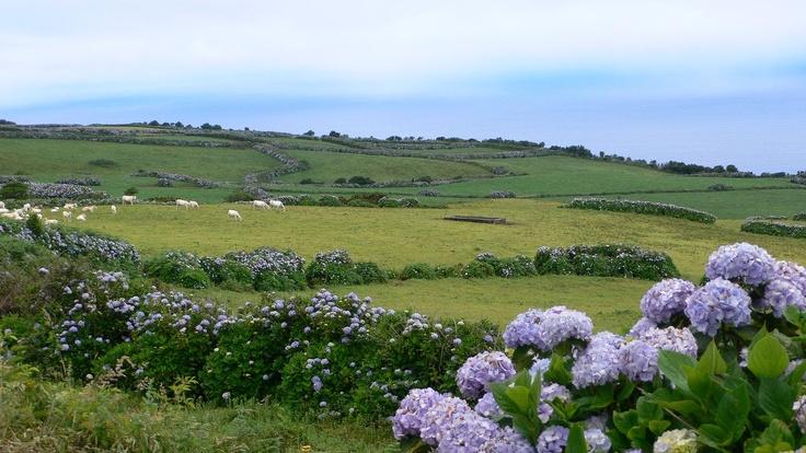 São Jorge island, Azores