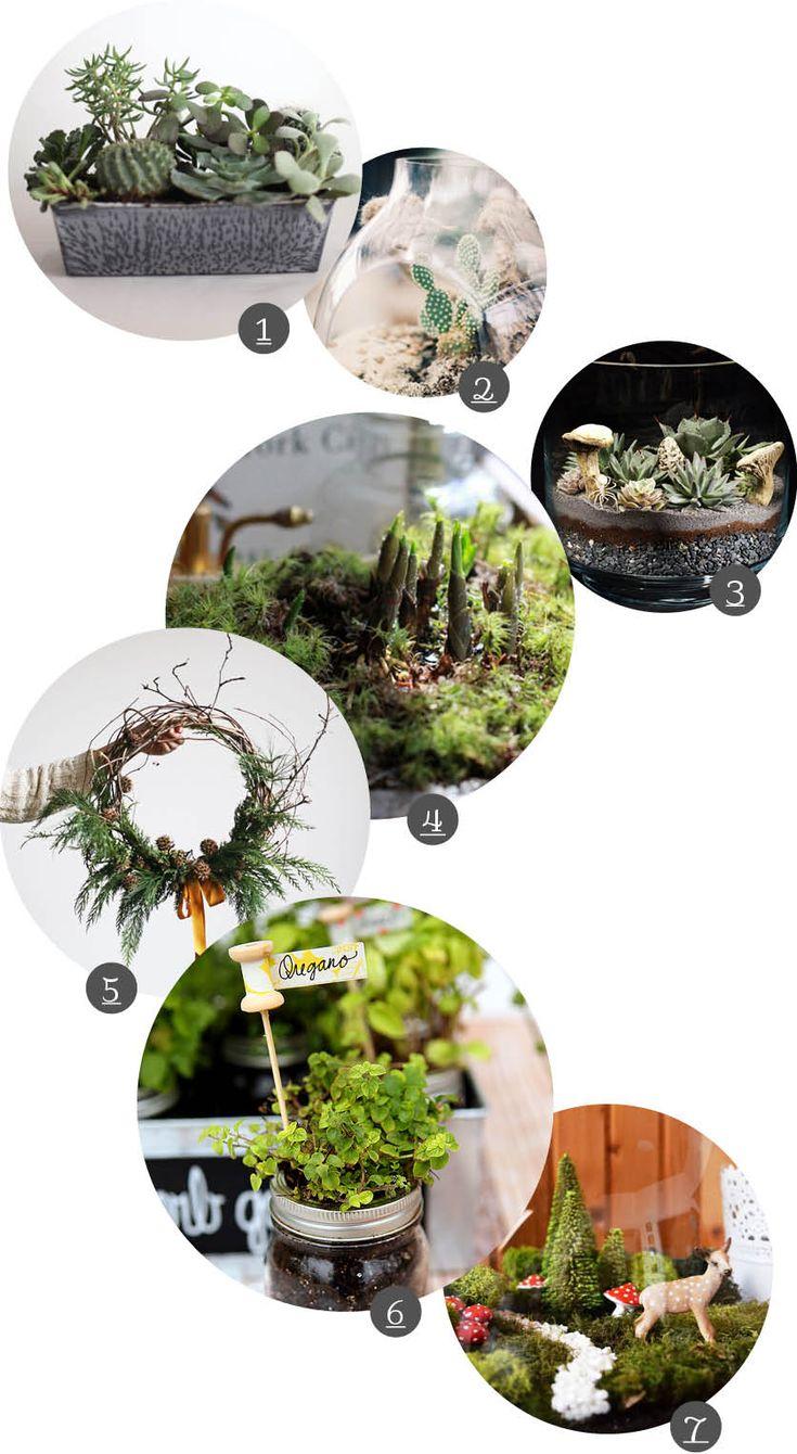 7 DIY Garden Gift Ideas // Cadeaux de Noël DIY { végétal }