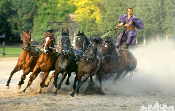 The legendary Puszta-Five Hortobagy: http://bestbudapesttourguides.com/en/choose_a_guide-page-3/budapest-destination-57/ildikovarga-guide-34/the_hungarian_puszta___trip_to_hortobagy-tour-162/