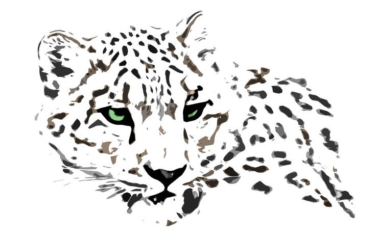 snow leopard by newwoodland on DeviantArt