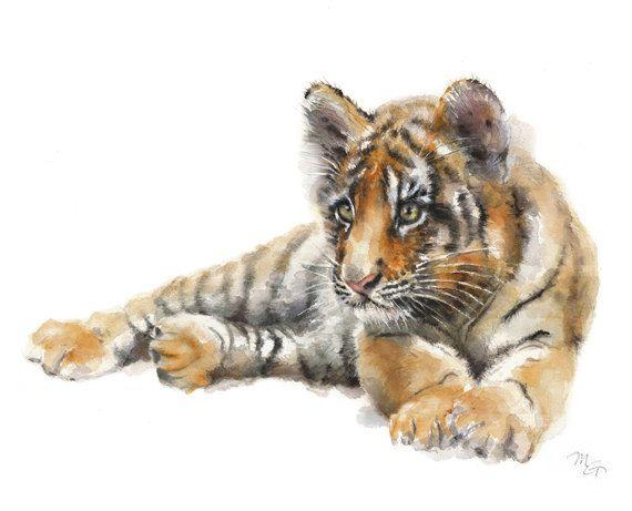Pittura dell'acquerello di tigre. Stampa d'arte. Natura o illustrazione animale. Acquerello illustrazione animale della fauna selvatica.