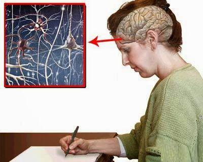 Sistema Neuroescritural.: ¿QUÉ OCULTAN LOS ERRORES QUE SE COMETEN AL ESCRIBIR?