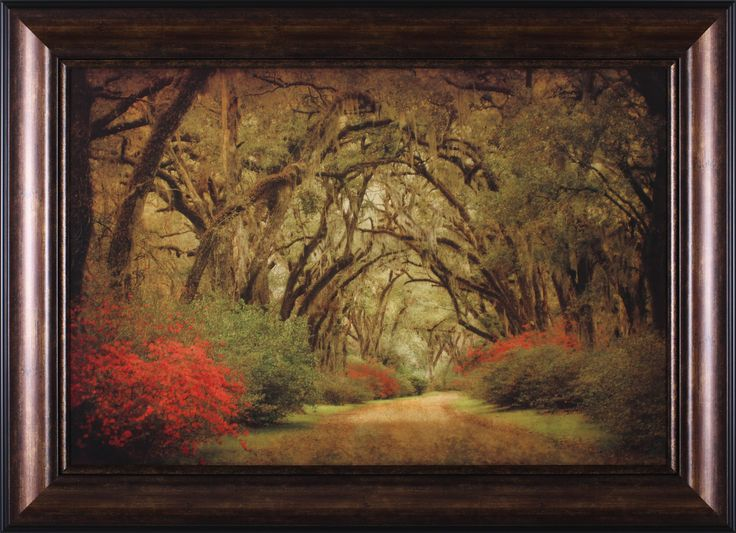 Road Lined with Oaks and Flowers by William Guion Framed Photographic Print