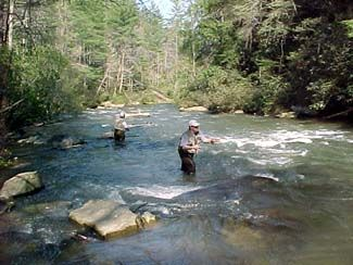 Trout fishing in the mountain creeks of the Blue Ridge Mountains in Georgia.