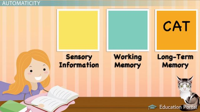 How does information make its way to memory? How do people learn? In this lesson, we'll examine the information processing theory of learning,...