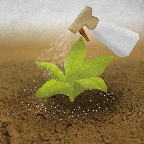 5 ways to get rid of slugs (including organic, natural methods)
