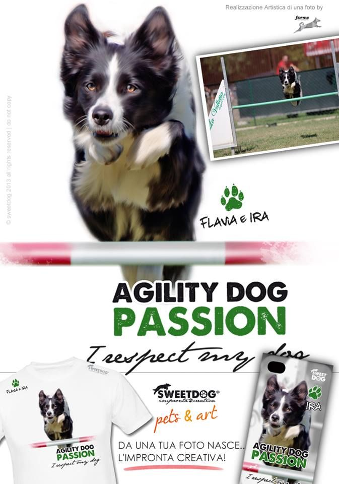 Dog: IRA (Border Collie) - Personalized T-Shirt & iPhone Cover - www.facebook.com/SweetDogStore