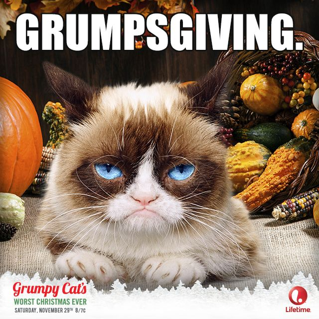 (Un) Happy Thanksgiving. This Saturday Grumpy Cat's Worst Christmas Ever will ruin your holiday spirit at 8/7c on lifetimetv!