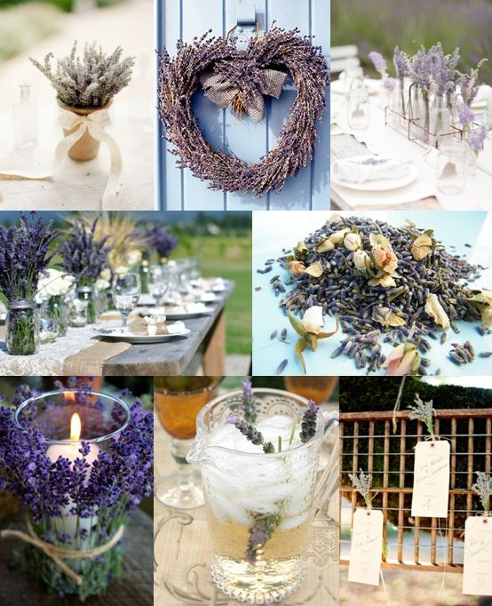This picture is my inspiration for my wedding on August 24 :) Middle picture on the left is what I'm doing for the reception decorarions! -Angie