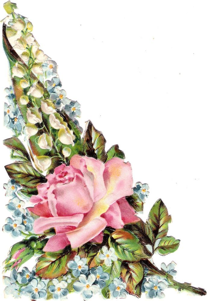 Oblaten Glanzbild scrap die cut chromo Blume flower  XL 17 cm Rose forgetmenot