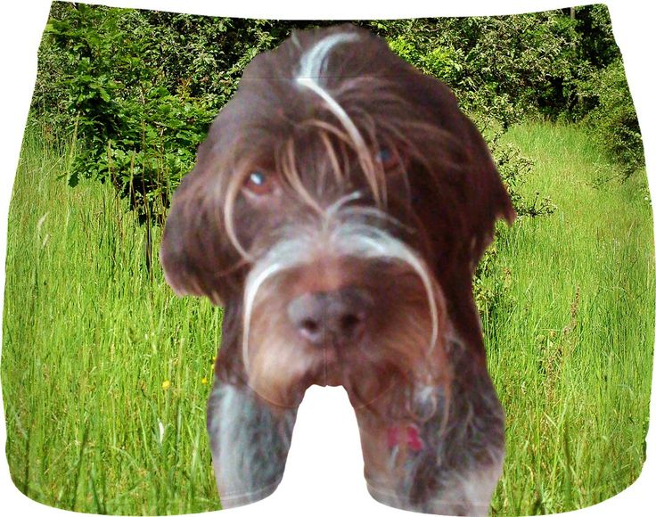 Check out my new product https://www.rageon.com/products/dog-wirehaired-pointing-griffon-men-underwear?aff=BWeX on RageOn!