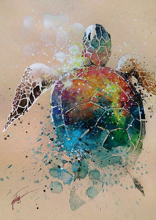 Watercolour and gouache turtle