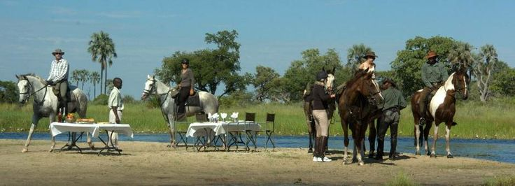 African Horseback riding. Choose from a couple of our horseback safaris: http://www.africanoutposts.co.za/packages/detail/news/the-kalahari-and-the-cape/