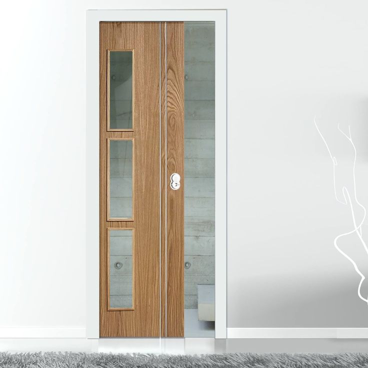 51 best single panelled pocket doors images on pinterest for Modern glass pocket doors