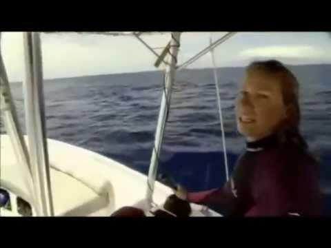 L'odyssée des baleines à bosse - YouTube