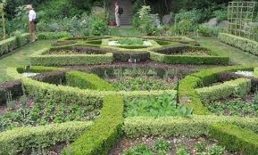 17 best images about knot gardens on pinterest gardens for Herb knot garden designs