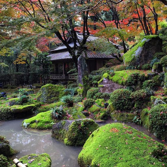 Beautiful Zen Gardens Water Gardens Japanese Gardens Japanese Homes Garden Paths Moss Garden Serenity Garden Japan Garden Garden Waterfall