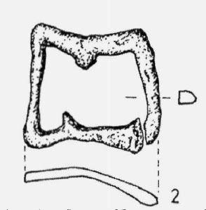 Sarkantyú-felerősítő csat (Szuhogy-Csorbakő) - Hagyomány és múltidéző