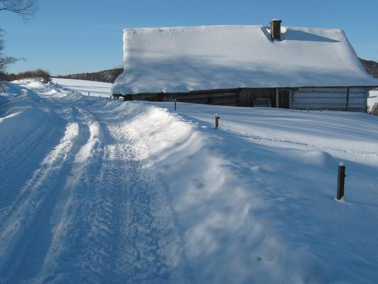 Winter house in Beskid Niski Mountains. Poland.