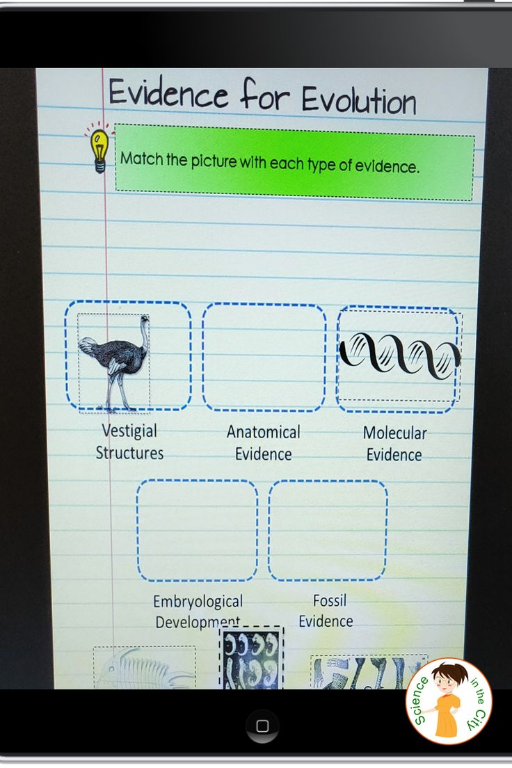 Evidence for Evolution Activity (Digital and Paper