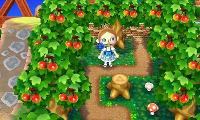 Fairy Forest Path Animal Crossing New Leaf Qr Code