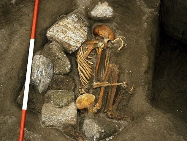 Researchers say that a pair of 3,000-year-old mummified corpses that were recently discovered in Scotland are actually composed of body parts originating from six different people.