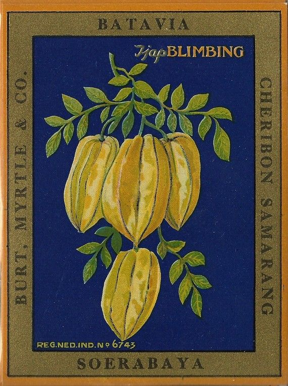 Star Fruit Burt Myrtle & Co Fabric Label by thecollectiblechest
