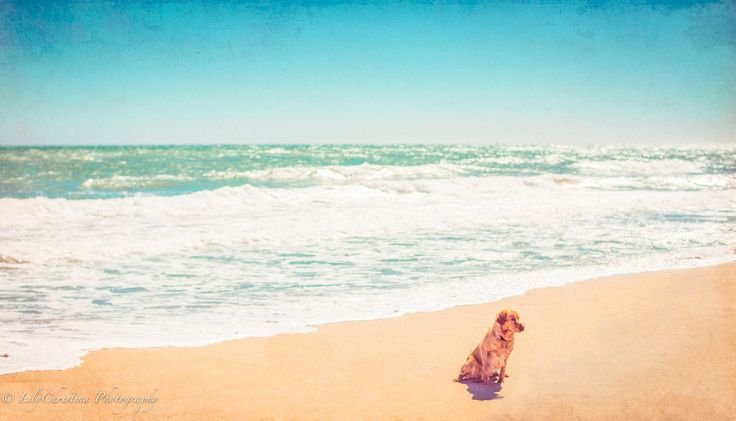 fuengirola, spain, espanja, fisherman, ocean, blue, sea, umbrella, calm, colourful, valokuvaaja porvoo, lilychristina, lilychristina photography