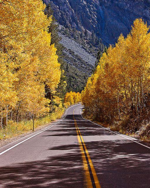 June Lake Loop ~ Eastern Sierra, California- I know this road like the back of my hand!!