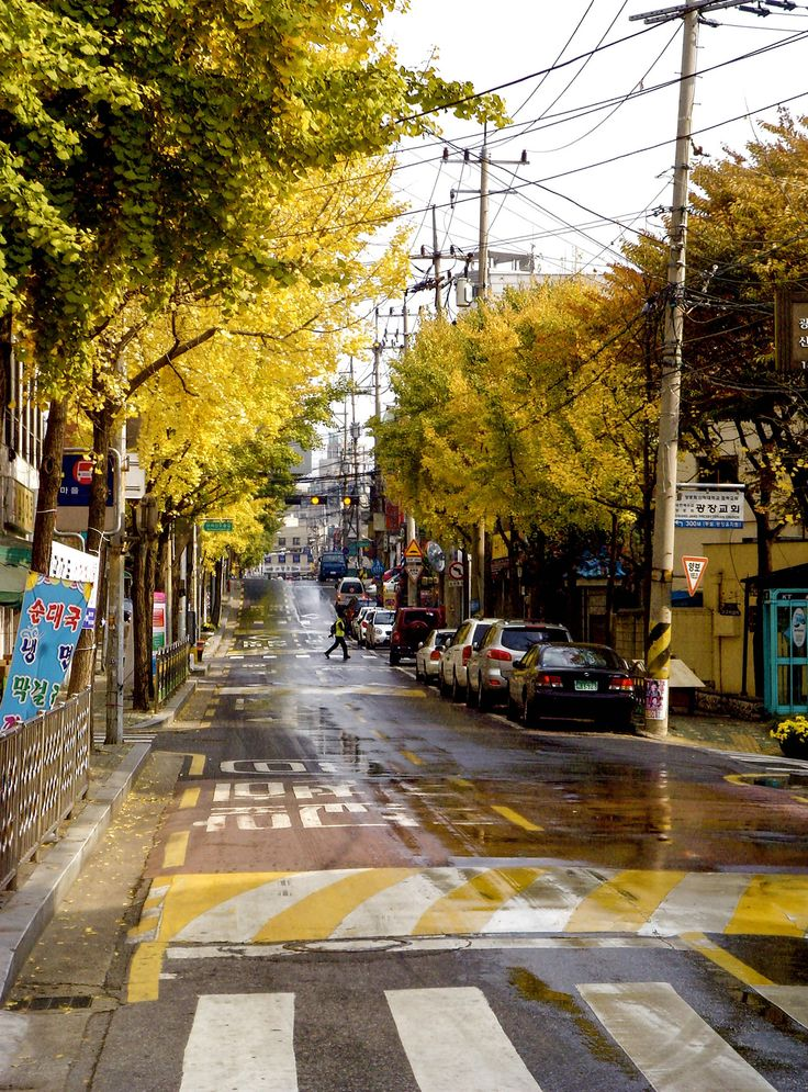 Autumn in the streets of Seoul….