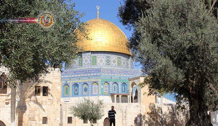 Após EUA e Guatemala, Israel diz que 10 países podem levar embaixadas para Jerusalém. Israel está em negociações com mais de dez Estados para o reconhecimento de Jerusalém como a capital israelense e a transferência das embaixadas de Tel Aviv para Jerusalém, disse o vice-ministro do exterior do país, Tzipi Hotovely.