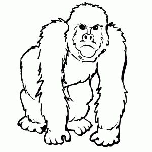 free-gorilla-printable-coloring-pages-for-preschool