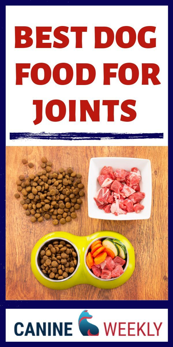 Dog Arthritis And Dog Joint Issues Such As Hip And Elbow Dysplasia Are Common Developments In Older Dog Organic Dog Food Dog Food Recipes Foods For Arthritis