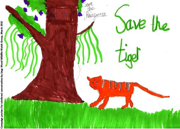 wildlife conservation posters