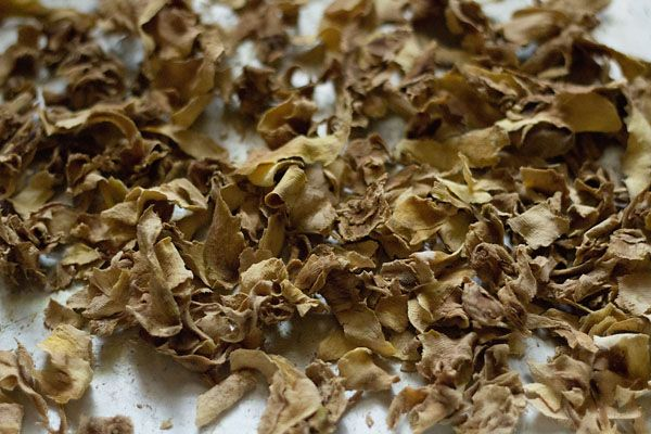 dried mango pieces - making amchur powder