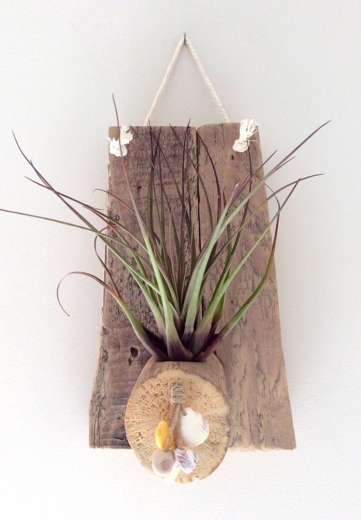 Les 161 meilleures images propos de divers bois flott for Bois flotte vase