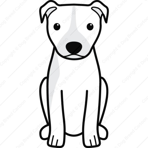 85 best American Pit Bull Terrier (Natural Ears) images on