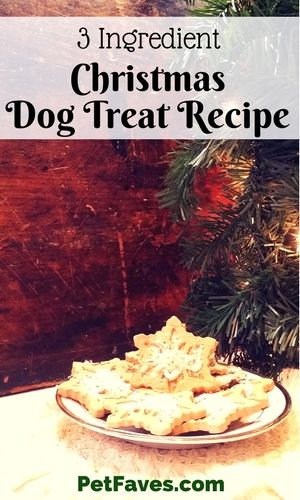 Don't forget the dog when you are doing your holiday baking. Make time for this 3 Ingredient Christmas Dog Treat Recipe and make your dog happy.    #dogtreatrecipe #dogtreats #christmas #holidays