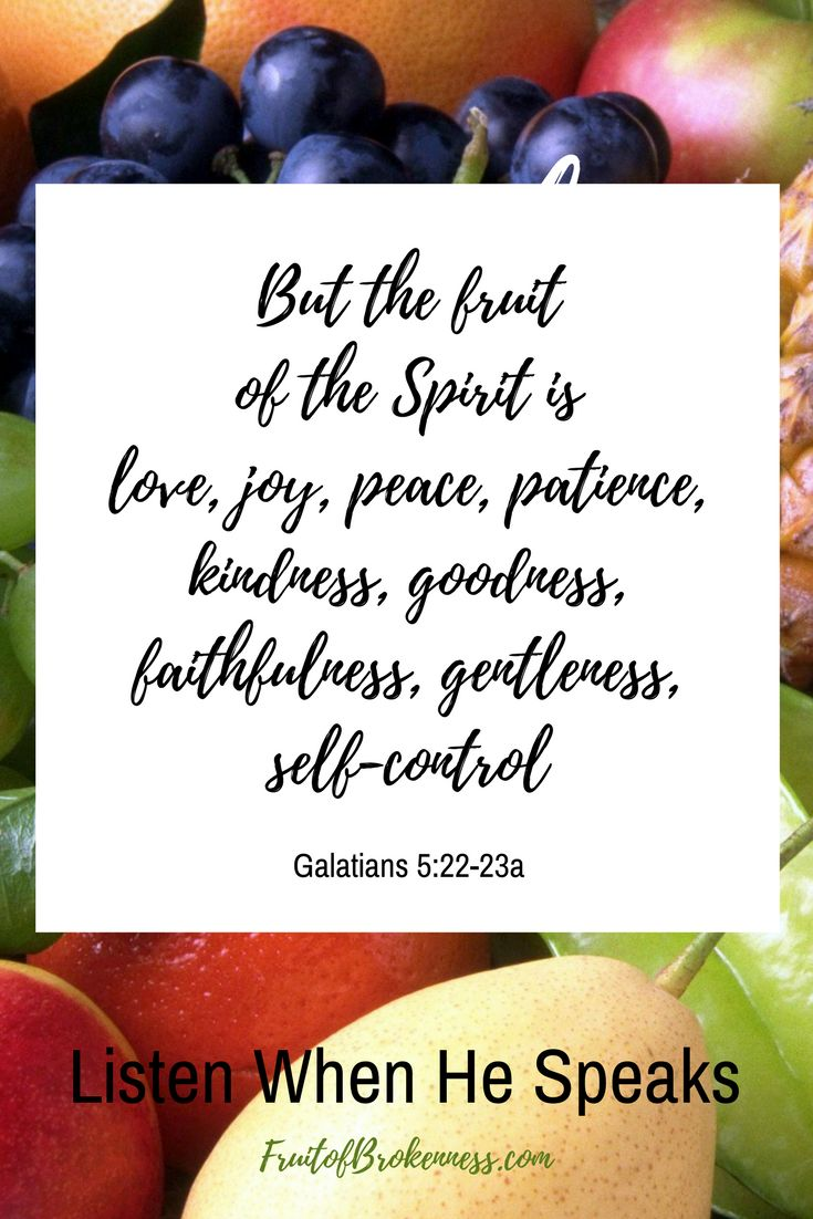 """But the fruit of the Spirit is love, joy, peace, patience, kindness, goodness, faithfulness, gentleness, self-control"" Galatians 5:22-23a, NASB"