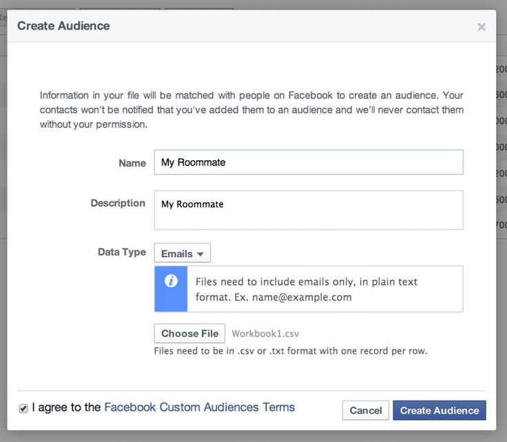 How To Create A Custom Audience On Facebook (Funny story)