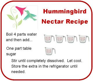 Homemade Hummingbird nectar recipe    Next stop: Pinterest